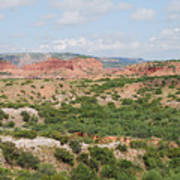 Caprock Canyon State Park  Poster