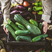 Farmer With Vegetables Poster
