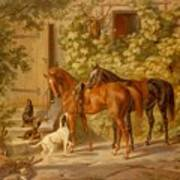 Horses At The Porch Poster
