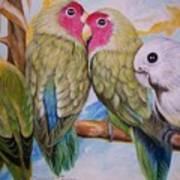 Flygende Lammet   Productions             3 Love Birds Perched Poster