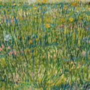 Patch Of Grass Poster