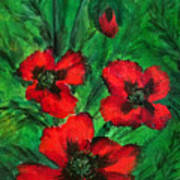 3 Red Poppies Poster