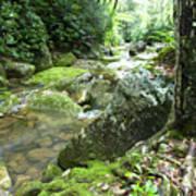 Rushing Mountain Stream Poster