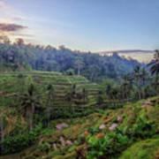 Tegalalang - Bali Poster