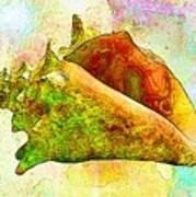Underwater. Sea Shells Poster