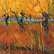 Willows At Sunset Poster