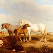 Willis Henry Brittan Horses And Cattle On The Shore Henry Brittan Willis Poster