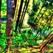 Landscape Image Poster