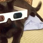3d Cat Poster