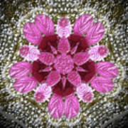 3d Pink Purple Mandala Painting Poster