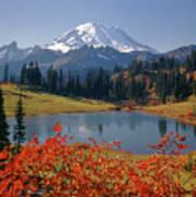 3m4824 Tipsoo Lake And Mt. Rainier H Poster