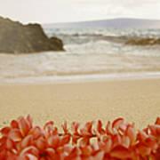 Aloha Lei Maui Hawaii Poster