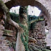 Castle Ruin Noerten-hardenberg Poster