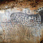 Cave Art: Horse Poster