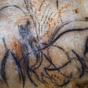 Cave Art: Mammoth Poster