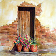 Door With Pots Poster