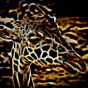 Giraffe Poster
