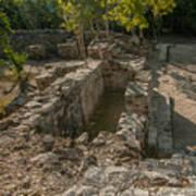 Grupo Coba At The Coba Ruins  Poster