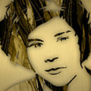 Harry Styles Collection Poster