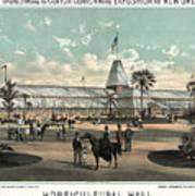 New Orleans, Fair, 1884.  Poster