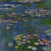 Water Lilies 1916 Poster