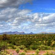Sonora Desert Poster