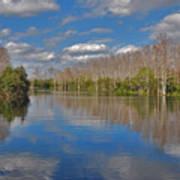 47- Everglades Serenity Poster