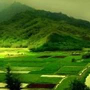 Natural Landscape Poster