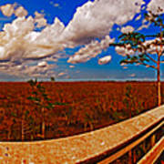 4x1 Everglades Panorama Number Two Poster