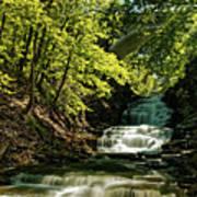 Cascadilla Gorge Falls Poster