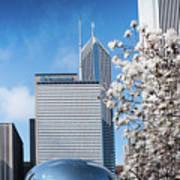 Chicago Bean Millenium Park Poster