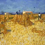 Corn Harvest In Provence Poster