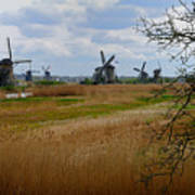 Kinderdijk Windmills Poster