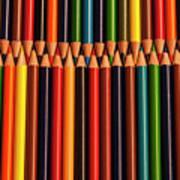 Multicolored Pencils  Poster