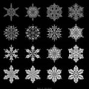 Snowflake Simulation Poster