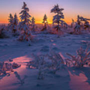 Winter Evening Landscape With Forest, Sunset And Cloudy Sky.  Poster