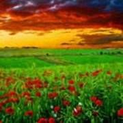 Nature Landscape Wall Art Poster