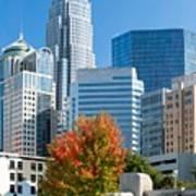 Charlotte North Carolina Cityscape During Autumn Season Poster