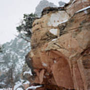 Grand Canyon In Snow Poster