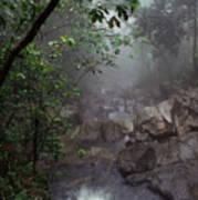 Misty Rainforest El Yunque Poster