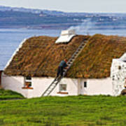 Traditional Thatch Roof Cottage Ireland Poster