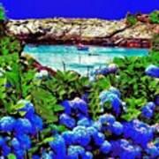 75h  Ocean Flowers Poster