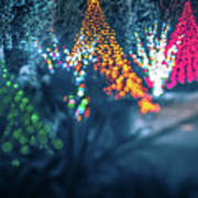 Christmas Season Decorationsafter Sunset At The Gardens Poster