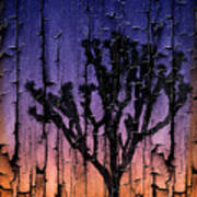 Joshua Tree With Special Effects Poster