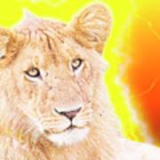lioness Masai Mara, Kenya Poster