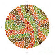 Ishihara Color Blindness Test Poster