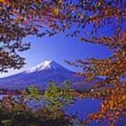 Mount Fuji In Autumn Poster