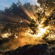A Blast Of Sunrise Poster