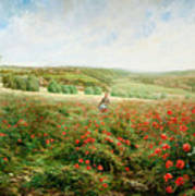 A Corner Of The Field In Bloom Poster
