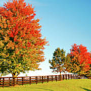A Country Autumn Poster